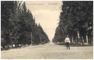 Pushkin's street in the beginning of XX centure